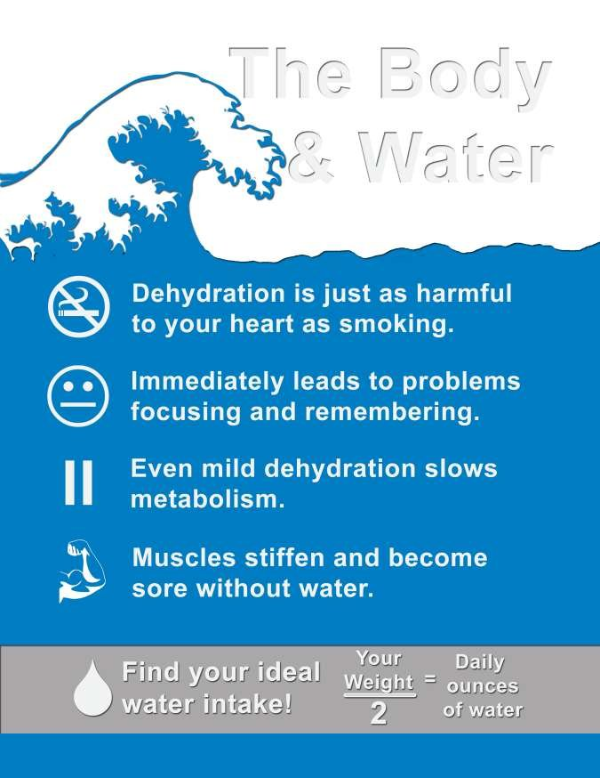 an infographic about the body, water and dehydration